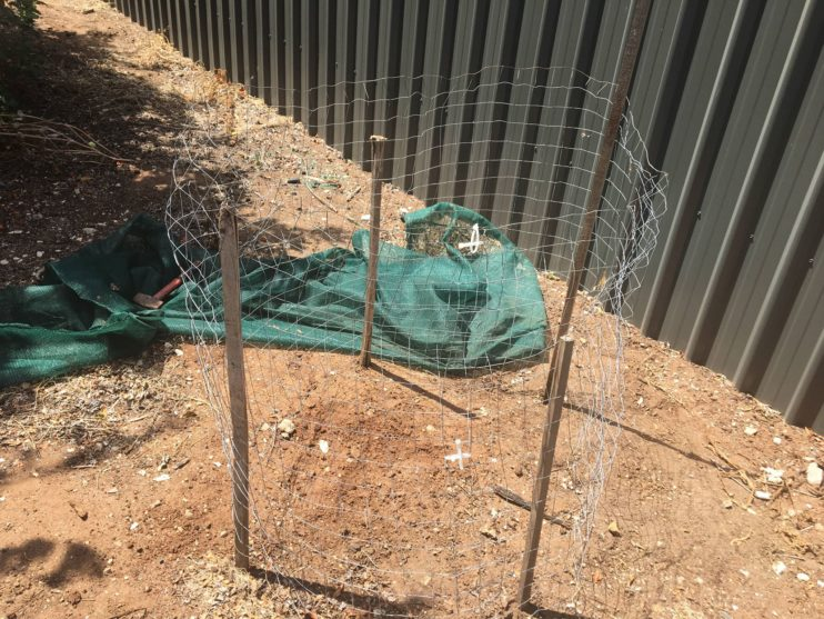 How To Build A Simple Wire Compost Bin And Mine Are